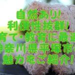 子育てしやすい街【神奈川県平塚市】教育にも適している訳がある!!