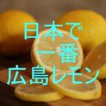 【無農薬なら広島レモン】安心安全の理由と皮までおいしい簡単レシピ