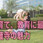 子育てをしやすい街「妙蓮寺」教育の環境も整い、住みやすさ抜群!