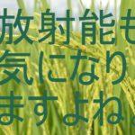 【無農薬 玄米】は発芽させないとダメ?その理由とおいしい炊き方